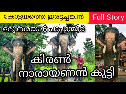 Kiran Narayanankutty Elephant Full Story | കിരൺ നാരായണൻകുട്ടി