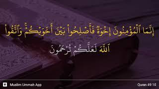 Download lagu Al Hujurat ayat 10 MP3