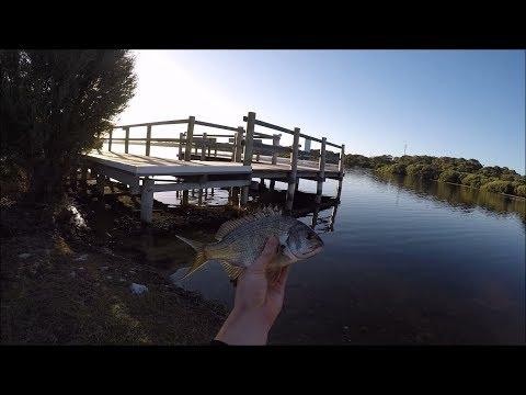 Bream Fishing | Robe, South Australia