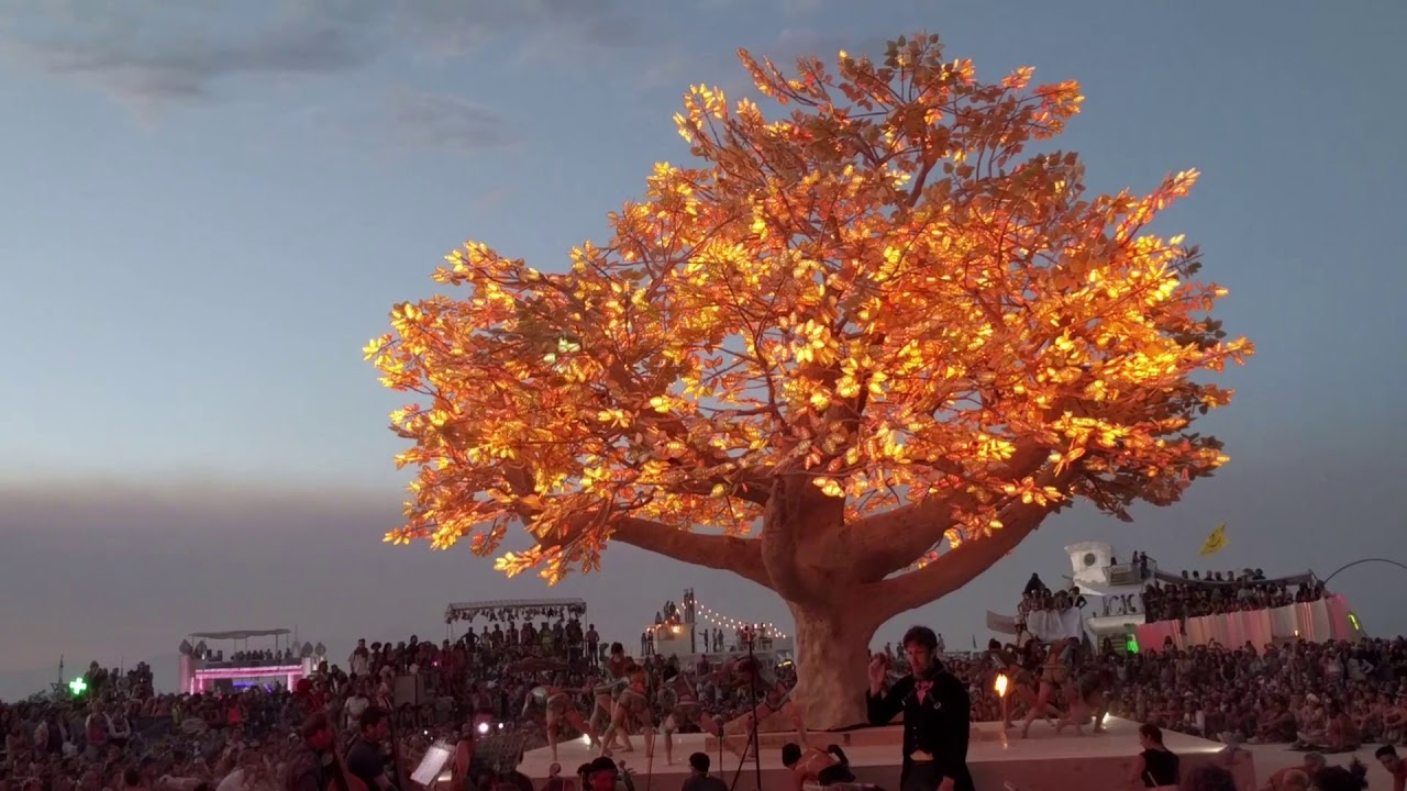 Tree Of T 233 N 233 R 233 Colors And The Rite Of Spring Burning Man
