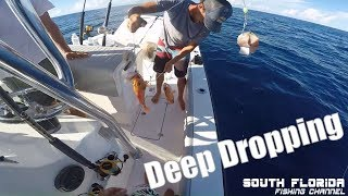 Deep Dropping after Hurricane Irma | Fishing
