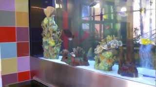 1500 Gallon Salt Water Fish Aquarium, By Blue Planet Aquarium Services