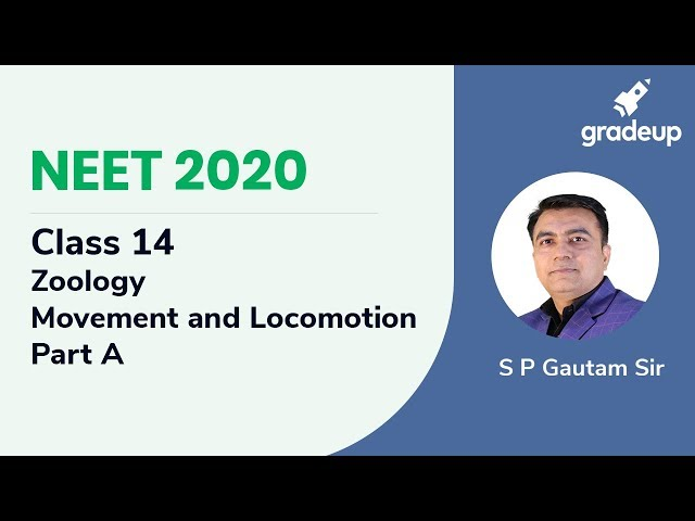 NEET 2020 | Movement and Locomotion - Part A | Zoology | Class 14