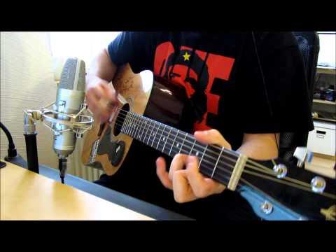 Die toten Hosen - Draußen vor der Tür - Guitar Cover [HD]
