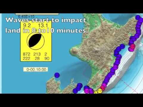 Tsunami New Zealand.mov