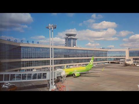 Московский Аэропорт Домодедово. Не только зеленые. 2018-2019