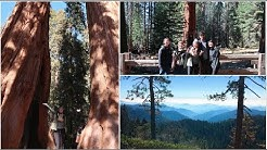 Hiking Weekend (Part 1): Sequoias & Airbnb Tour!
