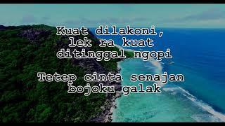 Nella Kharisma - Bojo Galak Video Lirik
