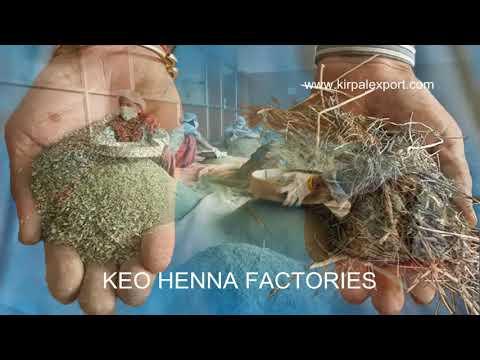 Keo Henna Crop Harvesting In India Youtube
