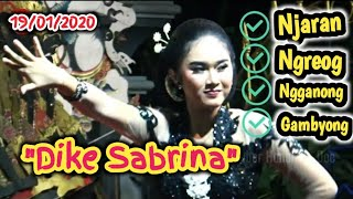 Download lagu Dike Sabrina! Penari Serba Bisa Goyang'e Joss Kromasan Ngunut Tulungagung Ki Sun Gondrong 19/01/2020