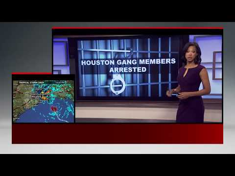 16 people from Houston area arrested in rental car fraud operation