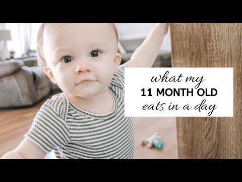 WHAT MY 11 MONTH OLD EATS IN A DAY 2019 | What should you feed your baby?