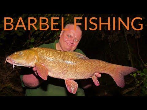 BARBEL FISHING - River Loddon (Video 114)