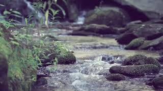 سورة الواقعة - كامله |  القارئ اسلام صبحي | ارح قلبك هدوء