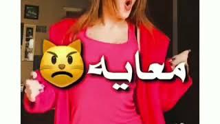 حاله واتس علي مهرجان طب ناسي العيشه عصام صاصا