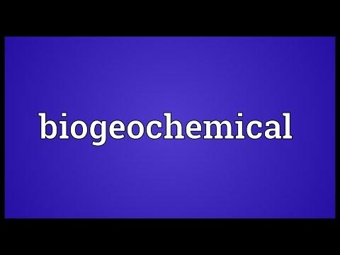 Header of biogeochemical