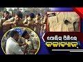 Odisha Police Goes On Strike Wears Black Badge