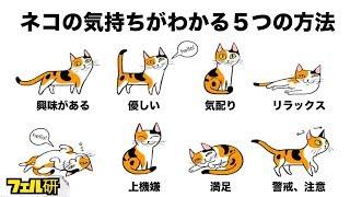 【衝撃】ネコの気持ちがよくわかる5つの方法