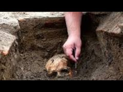 HUGE Discovery Proves Evolution WRONG! The Origin Of Mankind