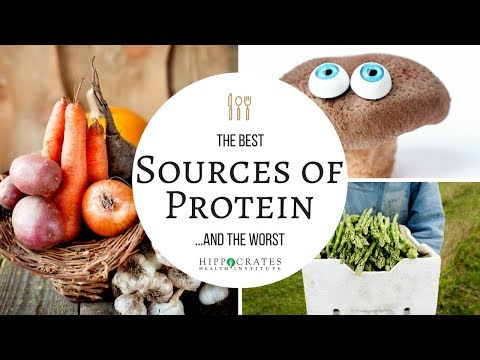 The Best and Worst Sources of Protein