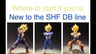 Where Should You Start Collecting If You're New to The SH FIGUARTS Dragon Ball DRAGON BALL Z LINE?