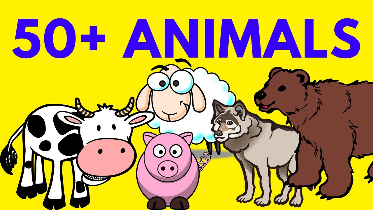 Forest Wild and farm animals list compilation for Kids to ...