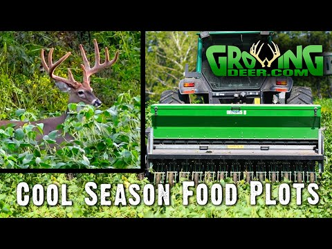 Better Deer Hunting: How To Plant Then Hunt Fall Food Plots (512)