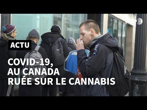 Le coronavirus fait exploser les ventes de cannabis au Canada | AFP News