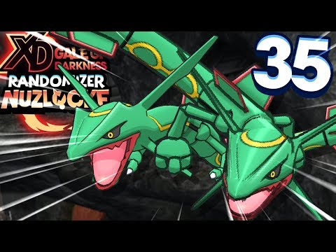 AM I SEEING DOUBLE?! (POKEMON XD GALE OF DARKNESS RANDOMIZER