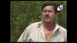 El añil, un colorante natural (2006)