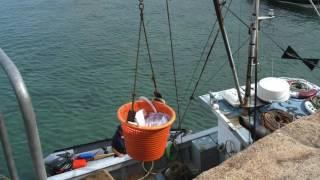 Ep  28 Dick Farrer, Sidewinder Trawling Iceland