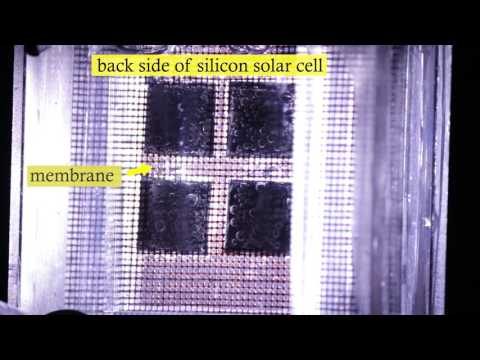 Hydrogen production with commercially available solar cells