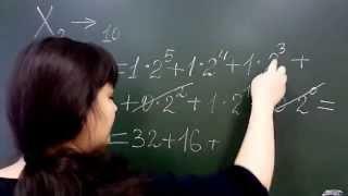 Перевод чисел из двоичной в десятичную систему счисления. Лекция по информатике №1