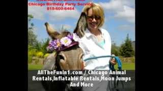 Call 815-600-6464-Animal Rental,Animal Rentals,Animal Rental Chicago,Animal Rentals Chicago Area 5