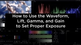 Color Correction: How to Use the Waveform, Lift, Gamma, and Gain - cinemaDNG