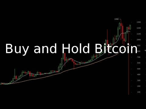 bitcoin long term investment