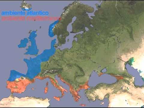 Europa - Climi e ambienti