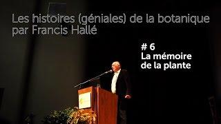 #6 Les histoires (géniales) de la botanique par Francis Hallé