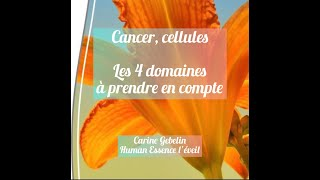 Cellules, cancer... 2 autres piliers fondamentaux à prendre en compte