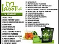 Overview of the IASO Tea Video  (Short Version)