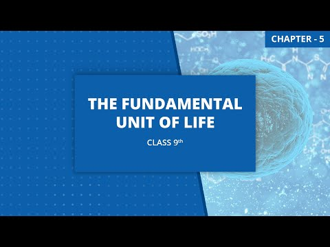 Chapter 5: The Fundamental Unit of Life| Class 9 Science NCERT Explanation  Video