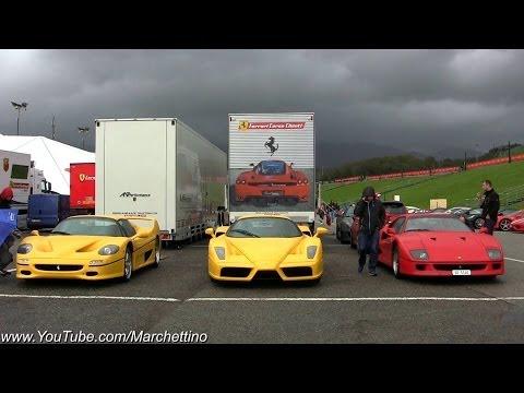 Unloading the Beasts: Ferrari Enzo, F50 and F40