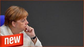 Experten teilen aus: Merkel trägt die Verantwortung für die Spaltung Europas!