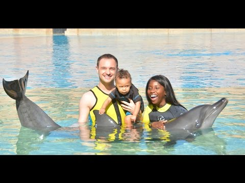 SWIMMING WITH DOLPHINS AT THE ATLANTIS - DUBAI TRAVEL VLOG 3 | AdannaDavid