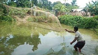 Traditional Net Fishing | Best Fishing Video | Cast Net Fishing With Beautiful Nature