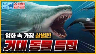 거대 괴수 특집 2부-거대 동물편! 차원이 다른 크기의 동물들이 몰려온다! (Top7 Giant Monster Anmal Movie)
