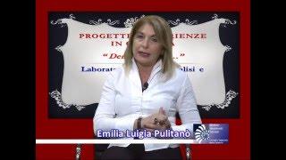 FESTIVAL DEL SERVIZIO SOCIALE - PROGETTO