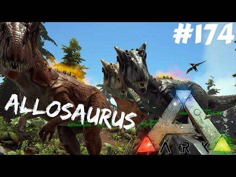 ARK Survival Evolved - Allosaurus - Oswajanie gangu #174