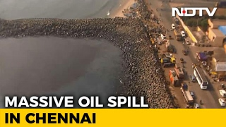 Chennai Oil Spill Touches Marina Beach, Hundreds In Massive Clean-Up
