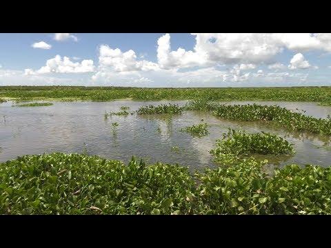 River Diversions Study